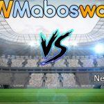 Prediksi Bola Leicester vs Newcastle 13 April 2019