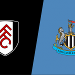 Prediksi Bola Fulham vs Newcastle Utd 12 Mei 2019